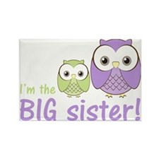 owlbigsispurplegreen Rectangle Magnet