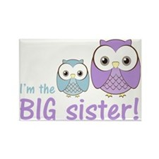 owlbigsispurpleblue Rectangle Magnet