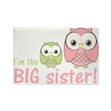 owlbigsispinkgreen Rectangle Magnet