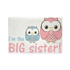 owlbigsispinkblue Rectangle Magnet