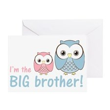 owlbigbrobluepink Greeting Card