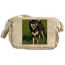 ipad_shiba Messenger Bag