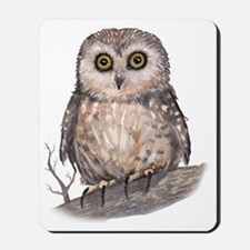Wide Eyed Owl Mousepad
