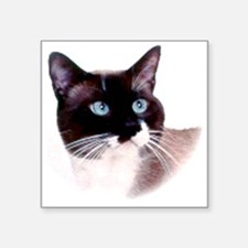"snoopthsml Square Sticker 3"" x 3"""