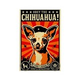 Chihuahua magnets Magnets