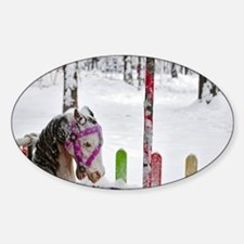 postcard_horse Decal