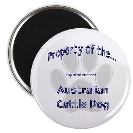 Cattle Dog Property Magnet