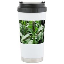 Caterpillars Travel Mug