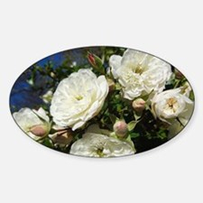 White Roses In Blue Sky Decal