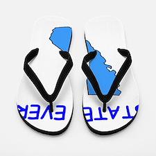 CAL Flip Flops