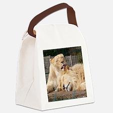 01 Jan Canvas Lunch Bag