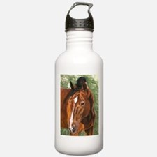Nolan Water Bottle