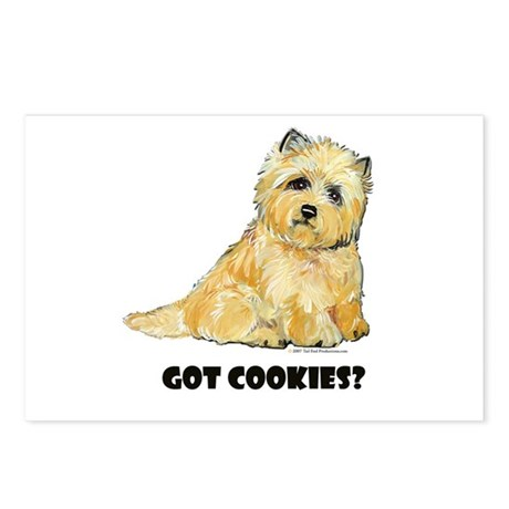 Cairn Terrier - Got Cookies? Postcards (Package of
