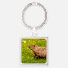 Capybara Keychains
