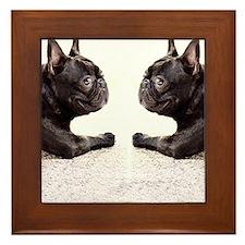 french bulldog flip flops Framed Tile