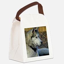 BeautifulSeppalaProfile Canvas Lunch Bag
