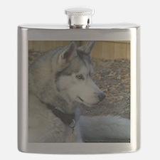 BeautifulSeppalaProfile Flask