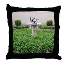 Picture 2183 Throw Pillow