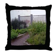 Picture 2257 Throw Pillow