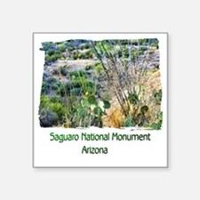 "Saguaro Natl Monument Square Sticker 3"" x 3"""