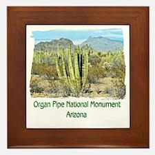 Organ Pipe Monument Framed Tile