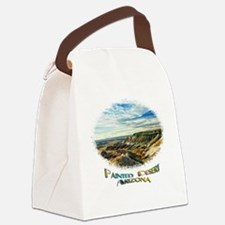color painted desert Canvas Lunch Bag