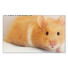 Hamster calendar cover Decal