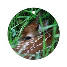 Fawn Round Ornament