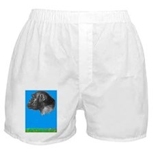 Chimp renee copy Boxer Shorts