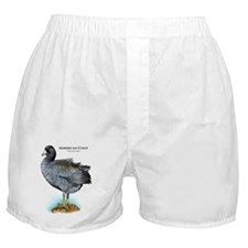 American Coot Boxer Shorts