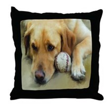 labwithballfinished11by11 Throw Pillow