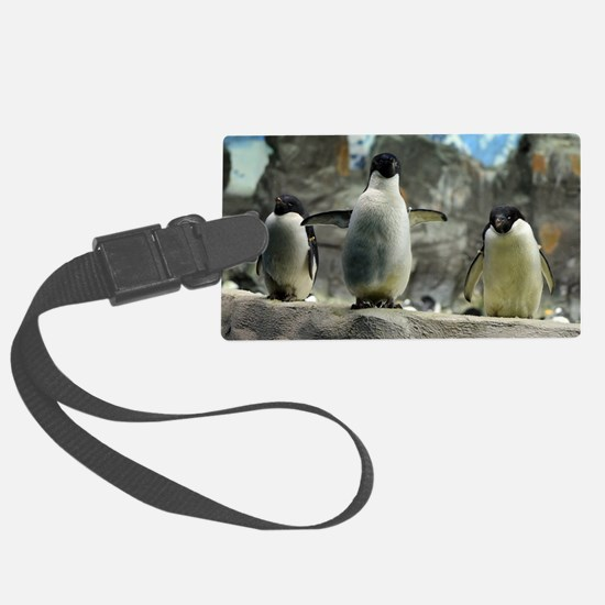 Adelie Penguins Luggage Tag