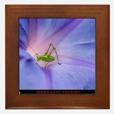 Morning Glory Hopper with MG logo Framed Tile