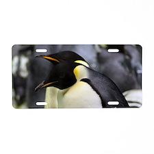 Emperor Penguins 4 Aluminum License Plate