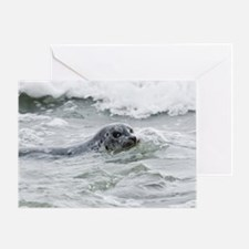 Sea Puppy with MG logo Greeting Card
