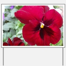Perfect Red Pansy Flower Yard Sign