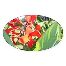Cana Lily Sun Bath Decal
