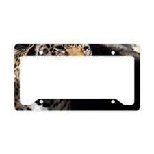 Jaguar 2 License Plate Holder