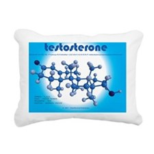 calendar - testosterone Rectangular Canvas Pillow
