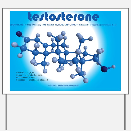 a function of anabolic steriod Anabolic steroids and kidney function a related factor is how long you stay on a drug cycle most rational athletes are aware of.