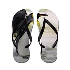 King Penguin 7 Flip Flops