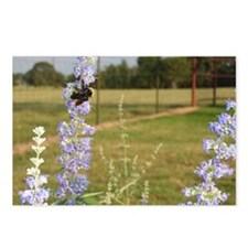 Bumble Bee on blue flower Postcards (Package of 8)