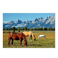Wyoming - Teton Mountains Postcards (Package of 8)