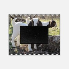 Twin goats Picture Frame