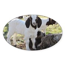 Twin goats Decal