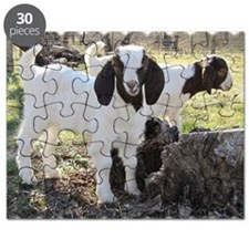 Twin goats Puzzle