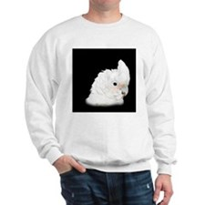 Goffins Cockatoo Sweatshirt