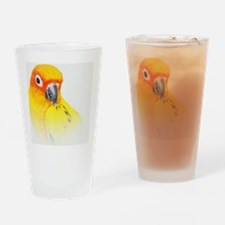 Sun Conure Drinking Glass