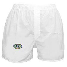 """4:20"" Boxer Shorts"