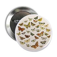 "Vintage Butterflies 2.25"" Button"